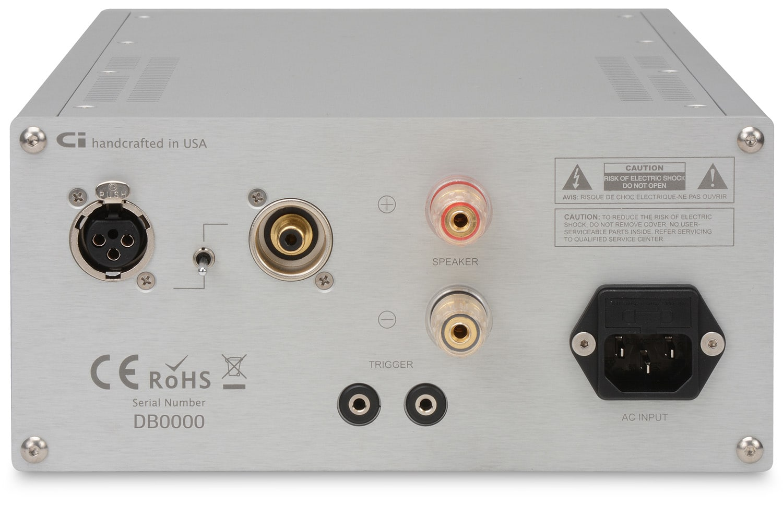 D•500 MKII Class D Monoblock Amplifiers (Pair) | CI Audio
